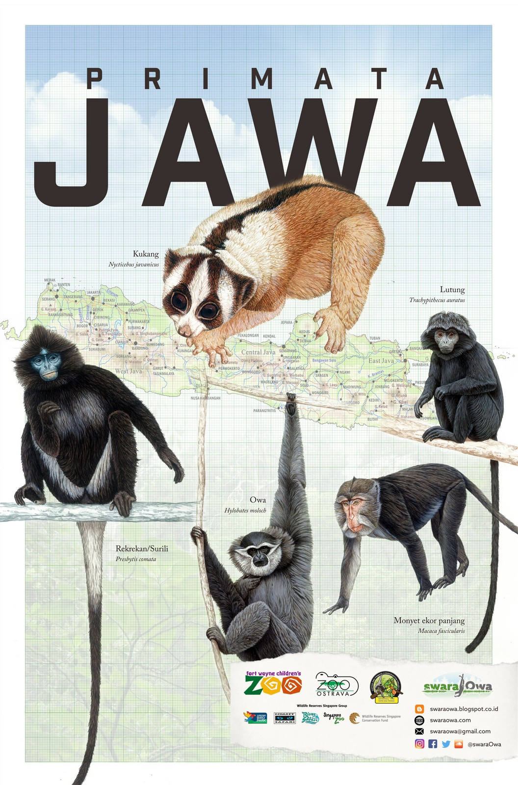 Primata jawa