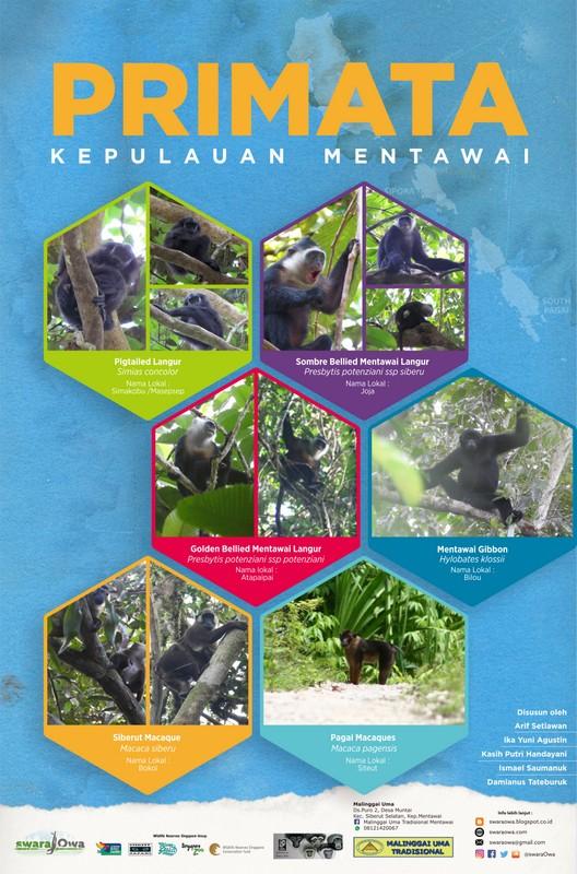 Poster Primata Mentawai_1213